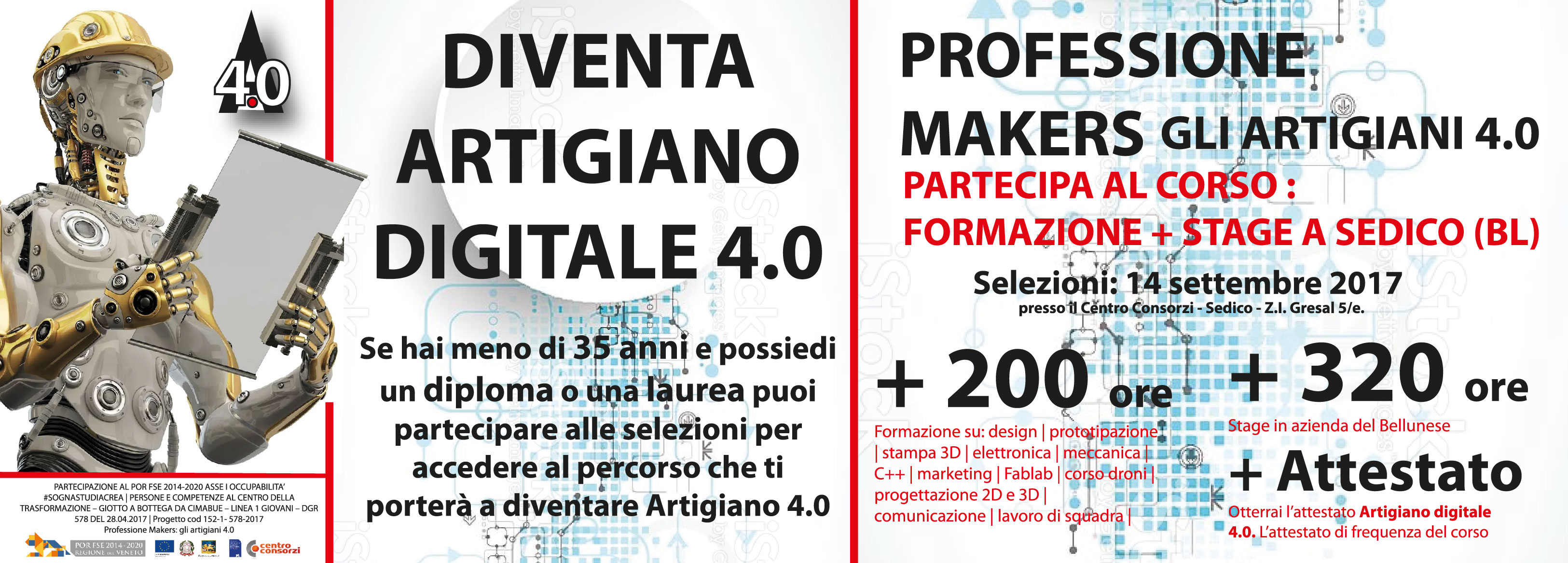 Professione Makers artigiano digitale belluno